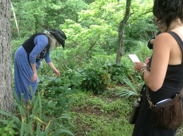 D'Coda (left) discussing Polygonatum botany at FireOmEarth class