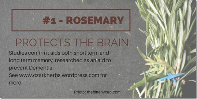 Rosemary Memory (1)